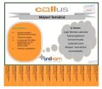 Callus- Müşteri Temsilcisi